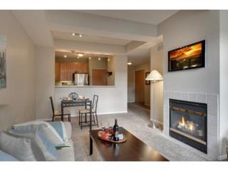 645 N 1st Street  305, Minneapolis, MN 55401 (#4558098) :: iMetro Property