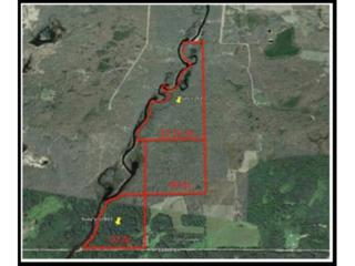 119.15  Acres 124th Lane  , Williams Twp, MN 56350 (#4564466) :: Keller Williams Premier Realty