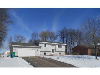 703  Division Street E , Buffalo, MN 55313 (#4565721) :: The Preferred Home Team