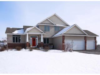 20541  Kerry Street NW , Oak Grove, MN 55011 (#4565951) :: The Preferred Home Team