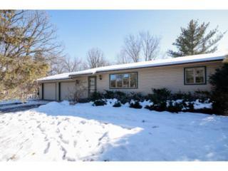 6113  Cedar Street  , North Branch, MN 55056 (#4567494) :: The Preferred Home Team