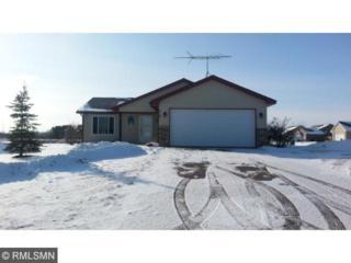 516  Jewell Street  , Mora, MN 55051 (#4567497) :: Homes Plus Realty