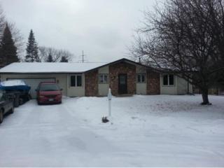 17201  Park Circle  , Eden Prairie, MN 55346 (#4568367) :: Homes Plus Realty