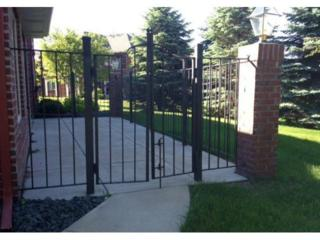 4340  Napier Parkway NE , Saint Michael, MN 55376 (#4568374) :: Homes Plus Realty