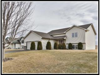 1417  Mallard Avenue  , Baldwin, WI 54002 (#4574032) :: Keller Williams Premier Realty