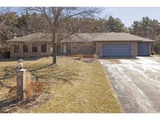 4035  Salem Drive W , Woodbury, MN 55129 (#4578322) :: The Preferred Home Team