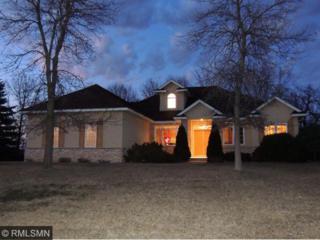 4134  Ethan Drive  , Eagan, MN 55123 (#4578714) :: Homes Plus Realty