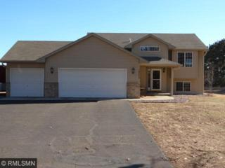 14773  301st Avenue  , Blue Hill Twp, MN 55371 (#4578734) :: Homes Plus Realty