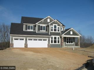8646  Ambergate Drive  , Victoria, MN 55386 (#4586554) :: Team Lucky Duck