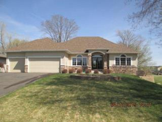 1867  Saint Johns Drive  , Woodbury, MN 55129 (#4588354) :: The Preferred Home Team