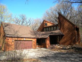4991  Wild Canyon Court  , Woodbury, MN 55129 (#4589321) :: The Preferred Home Team