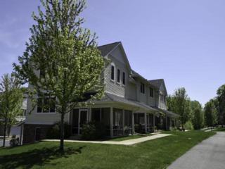 2151  Village Trail  , Mound, MN 55364 (#4598349) :: FindLKMTKAHomes.com Team