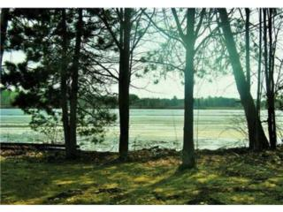 Lot 4  279th St  , Holcombe, WI 54745 (#4601786) :: The Preferred Home Team