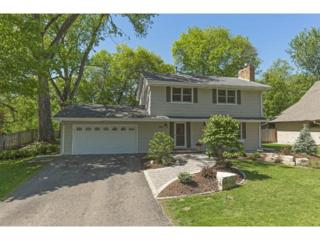 290  Ridgeview Drive  , Wayzata, MN 55391 (#4602337) :: FindLKMTKAHomes.com Team
