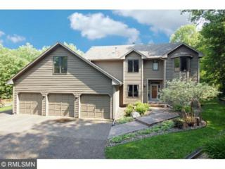 4528  Wild Canyon Drive  , Woodbury, MN 55129 (#4603462) :: The Preferred Home Team
