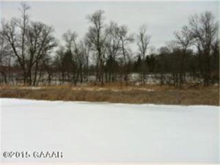 Lot 3  County 4  , Osakis, MN 56360 (#ALX10-16213) :: Team Lucky Duck