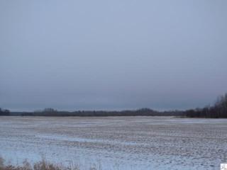 XXX  County Rd 12  , Kettle River, MN 55757 (#DAAR6014272) :: Team Lucky Duck