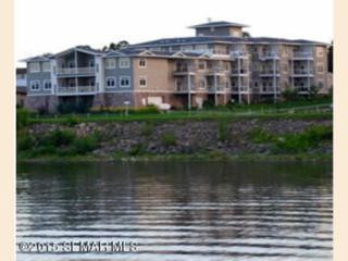 1215 N Lakeshore Drive  , Lake City, MN 55041 (#SEMN4060983) :: Homes Plus Realty