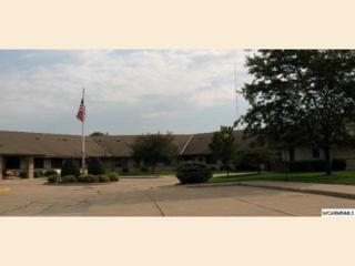 401 S County Road 5  112, Springfield, MN 56087 (#WCMN6008392) :: Team Lucky Duck
