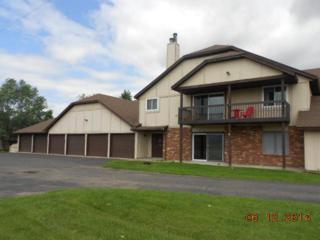 4461  Westdel Road  , Farmington, MN 55024 (#4497687) :: iMetro Property