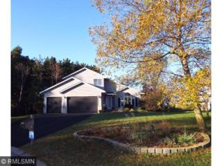 2843  Carver Park Circle  , Woodbury, MN 55125 (#4546268) :: The Preferred Home Team