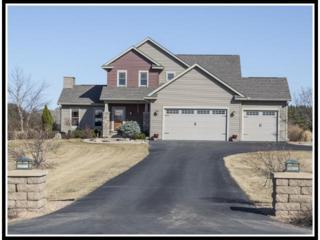 1057  Moonbeam Road  , Hudson, WI 54016 (#4574170) :: Keller Williams Premier Realty
