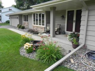 6101 W 101st Street  , Bloomington, MN 55438 (#4576931) :: The Preferred Home Team