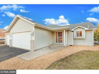 5031  143rd Avenue NW , Ramsey, MN 55303 (#4585599) :: The Preferred Home Team