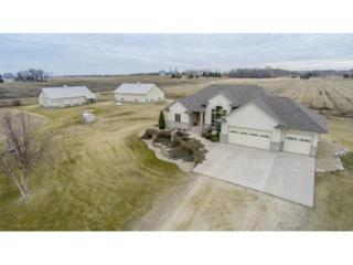 28668  890th Avenue  , Austin, MN 55912 (#4573657) :: Team Lucky Duck