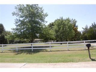 3824  Ranch Estates Drive  , Plano, TX 75074 (MLS #13007254) :: The Rhodes Team