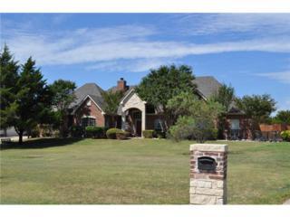 4121  Joe Wilson Road  , Midlothian, TX 76065 (MLS #13010989) :: Robbins Real Estate