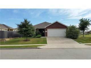 6437  Spring Ranch Drive  , Fort Worth, TX 76179 (MLS #13019329) :: The Tierny Jordan Team