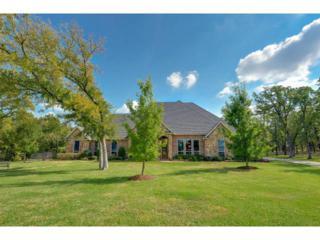 8224  Plum Creek Trail  , Burleson, TX 76028 (MLS #13040680) :: DFWHomeSeeker.com