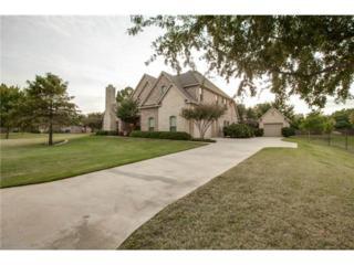 7400  Willow Oak Lane  , Arlington, TX 76001 (MLS #13041739) :: DFWHomeSeeker.com