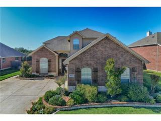 8004  Summerleaf Drive  , Arlington, TX 76001 (MLS #13044614) :: DFWHomeSeeker.com