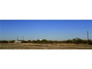3905  Chase Road  , Ponder, TX 76259 (MLS #13056944) :: Real Estate By Design