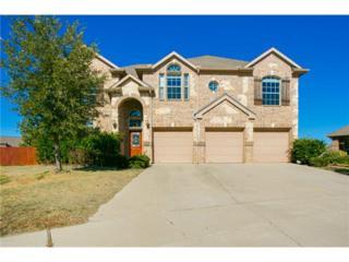 14064  Zippo Way  , Fort Worth, TX 76052 (MLS #13057151) :: Lisa Birdsong Realty Group