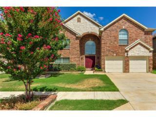 5024  Cedar Brush Drive  , Fort Worth, TX 76123 (MLS #13057560) :: The Tierny Jordan Team