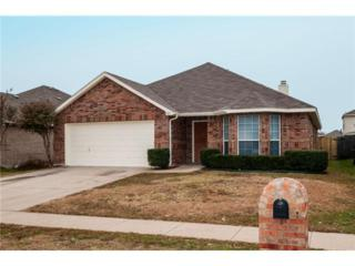 327  Leisure Lane  , Waxahachie, TX 75165 (MLS #13057952) :: Real Estate By Design