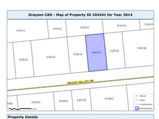 240lot  Brook Valley  , Gordonville, TX 76245 (MLS #13058118) :: Homes By Lainie Team