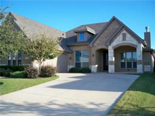 2410  Vintage Drive  , Arlington, TX 76001 (MLS #13058463) :: DFWHomeSeeker.com