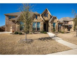 910  White River Drive  , Prosper, TX 75078 (MLS #13059617) :: Homes By Lainie Team