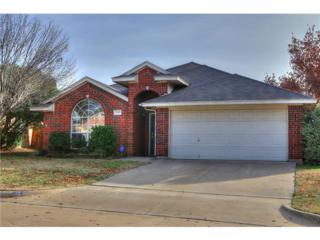 3820  Berrybush Lane  , Fort Worth, TX 76137 (MLS #13064169) :: The Todd Smith Group
