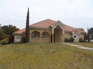 1509  Vista Verde Street  , Denton, TX 76210 (MLS #13067155) :: Real Estate By Design
