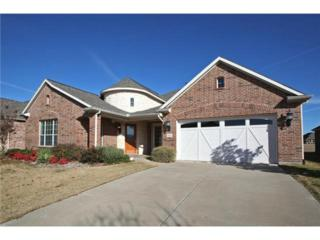 7236  Bay Hill Drive  , Frisco, TX 75034 (MLS #13068384) :: The Todd Smith Group