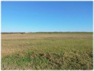 Whitewright, TX 75491 :: Homes By Lainie Team