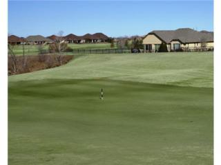 11617  Mayfield Drive  , Denton, TX 76207 (MLS #13084323) :: Lisa Birdsong Realty Group