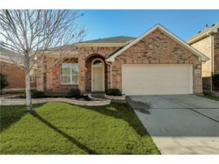 1608  Nighthawk Drive  , Little Elm, TX 75068 (MLS #13085675) :: Robbins Real Estate
