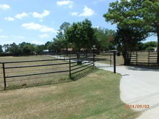 450  Orchid Hill Lane  , Copper Canyon, TX 76226 (MLS #13087883) :: The Tierny Jordan Team