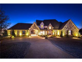 2551  Rock Haven Drive  , Flower Mound, TX 75022 (MLS #13094161) :: The Rhodes Team
